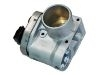 Throttle Body:71719143